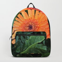 A Pair of Orange Gerber Daisies Backpack