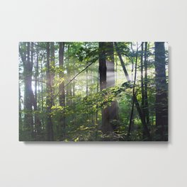 Cabin Light Metal Print