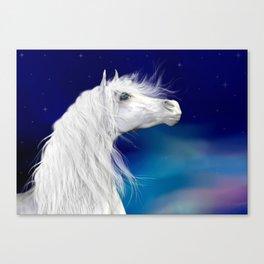 Star Gazer .. fantasy horse Canvas Print