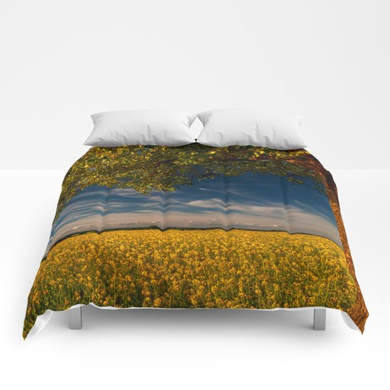 Wonderful springfields with beautiful sky - Rape Comforters