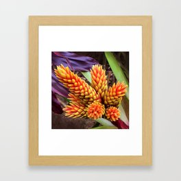 Hawaiian Tropical Elegant Jungle Flower Framed Art Print