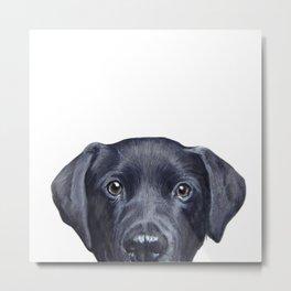 Labrador with white background Dog illustration original painting print Metal Print