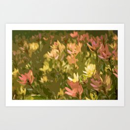 Protea fields Art Print