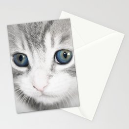 Blue Eye Kitten Stationery Cards
