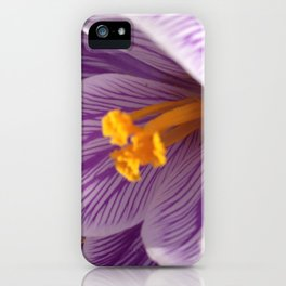 Spring Crocus, Mandy Ramsey, Haines, AK iPhone Case