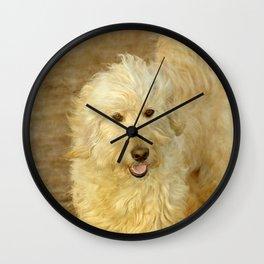 Goldendoodle Noa Wall Clock
