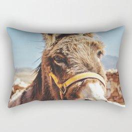 Donkey photo Rectangular Pillow