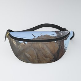 Tree leaning on rock Fanny Pack