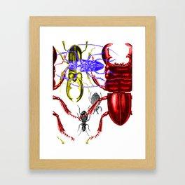 Beetleverse Framed Art Print