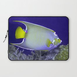 Queen Angelfish From Side Laptop Sleeve