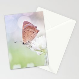 Serenity... Stationery Cards