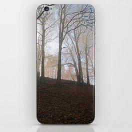 Image twelve iPhone Skin