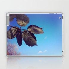 Leaves-Autumn Laptop & iPad Skin