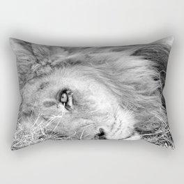 zxoiee Rectangular Pillow