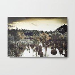 Dead Lakes Grunge Style Metal Print