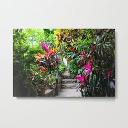 Dreamy Mexican Jungle Garden Metal Print