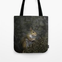 squirrel Tote Bags featuring Squirrel by Judith Lee Folde Photography & Art