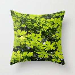 Sun-Dappled Forest in the Spring Throw Pillow