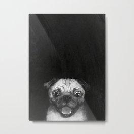 Snuggle pug Metal Print
