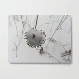 Snow Spike Metal Print