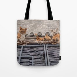 A Bunch of Cats Tote Bag