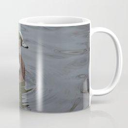 American Wigeon - Male Duck Coffee Mug