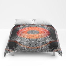 Forbidden Knowledge Comforters