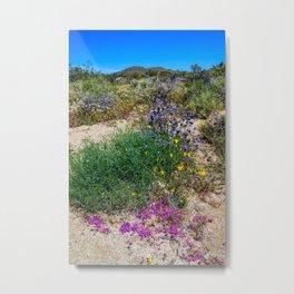 Painted Desert 7497 - Joshua_Tree National Park Metal Print