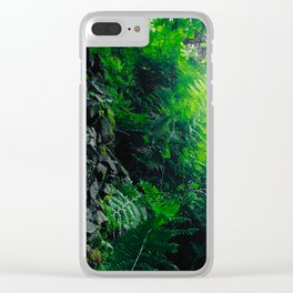 Rocks and Ferns Clear iPhone Case