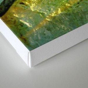 Fundamental Canvas Print
