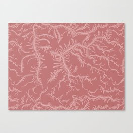 Ferning - Dusty Rose Canvas Print