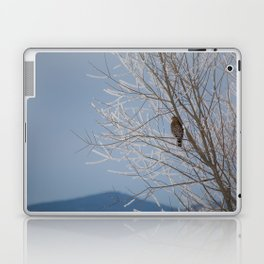 Red Shoulder Hawk Laptop & iPad Skin
