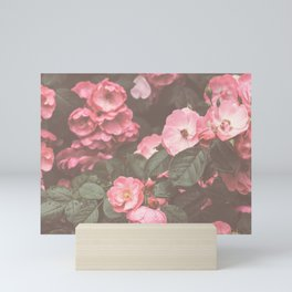 Pink Flowers in the Morning Mini Art Print