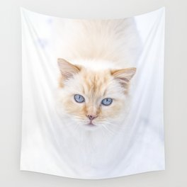 White ragdoll cat with blue eyes in snow, looking in camera Wall Tapestry