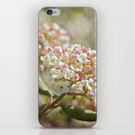 Vintage Inspired Pink and White Woodland Flowers with French Script iPhone Skin