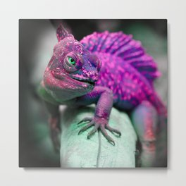 Camelian Photography Art Metal Print