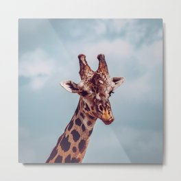 Giraffe Kenya Metal Print