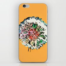 Fantasy Fruit iPhone & iPod Skin