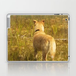 What does Maisie see? Laptop & iPad Skin