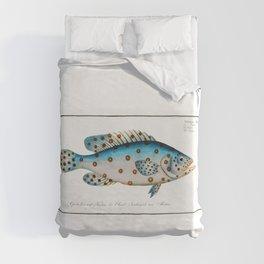 Spotted Scat (Argus) Fish Chart Identification Illustration portrait by Marcus Elieser Bloch Duvet Cover