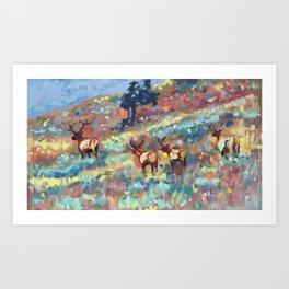 Bull Elk, Yellowstone Art Print