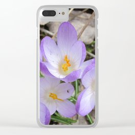 First Sign of Spring Clear iPhone Case