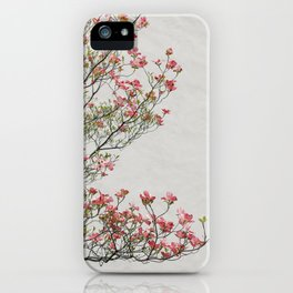 Pink Blossoms Against a White Wall iPhone Case