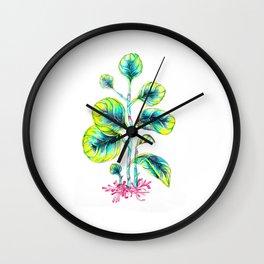 Peperomia Wall Clock
