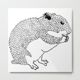 Hungry Hamster Eating A Seed Metal Print