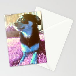 Blue dog on pink grass. Stationery Cards