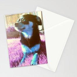 Blue dog on pink grass. Stationery Cards