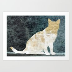 there is no cat Art Print