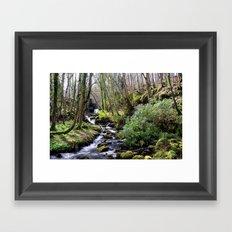 Downhill Forest Framed Art Print
