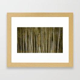 Bereza Framed Art Print